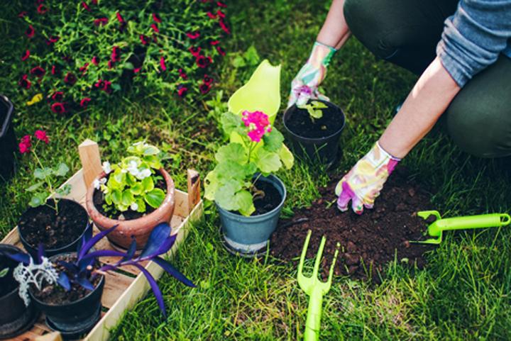 Κηπουρική για όλους στο Ίδρυμα Σταύρος Νιάρχος